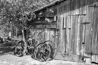 Country Shed B&W